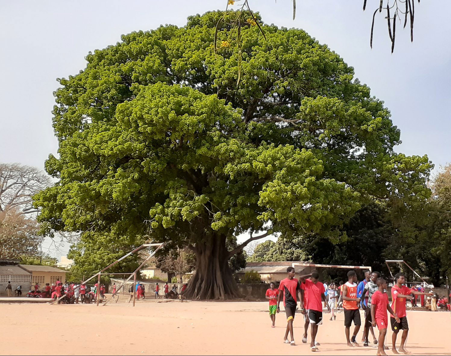Lycée Djignabo